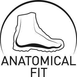 Anatomical Fit