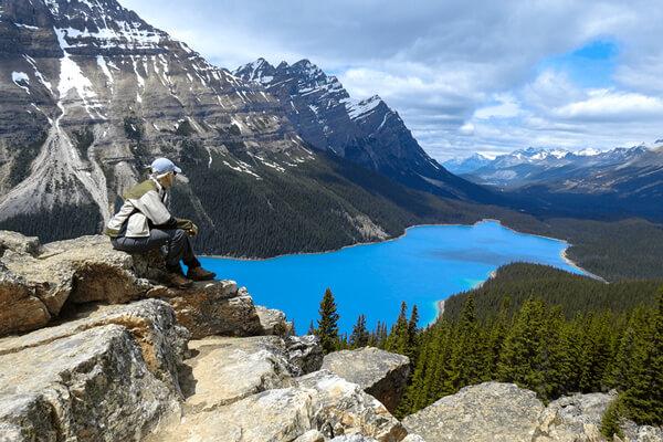 Une femme admirant la vue sur le lac Peyto dans le parc national de Banff.
